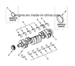 Cummins Isde Engine Part Main Bearing 4938933 3901091 3929017