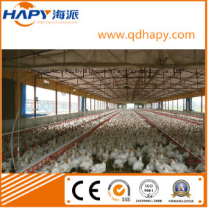 Environmental Controlled Poultry Equipments pictures & photos