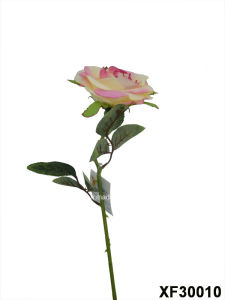 Artificial/Plastic/Silk Flower Single Stem of Rose (XF30010) pictures & photos