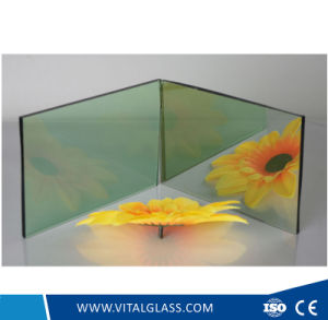 4-10mm Golden Bronze/Bronze/Clear/Tinted Float Glass pictures & photos