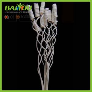 Welcome to Get Free Samples Decorative Rattan Stick pictures & photos