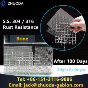 Preminum Mesh 1-600 Stainless Steel Wire Screen (SSWS) pictures & photos