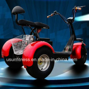 1000W 3wheels Electric Scooter with Ce pictures & photos