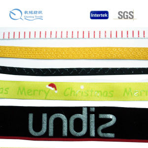 Top Sale Fashionable Logo and Colour Customized Eco-Friendly Printed Webbing pictures & photos