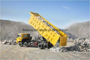 C&C 390PS 8X4 Cargo Dump Truck pictures & photos