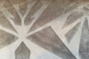 Embossed Velvet 100% Polyester Textile Fabric (EDM5110) pictures & photos