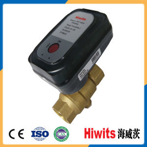 Hiwits 220V Thermostatic Radiator Valves Water Heating Valve for Room pictures & photos