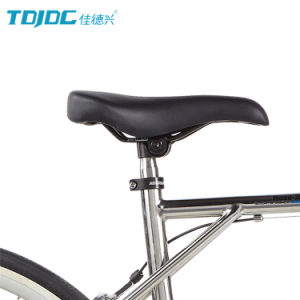 High-End Shaft Drive Utility Bicycle Classics Male Road Bike pictures & photos