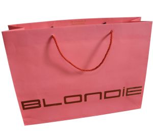 Customize Promotional Paper Gift Bags with Gold Silver Foil Stamping pictures & photos