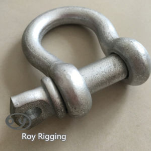 Us Spec Carbon Steel Shackle pictures & photos