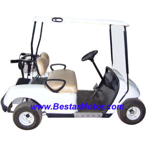 2-Seater Electric Golf Cart With CE (418GS)