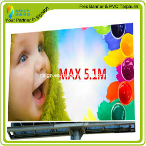 Customize PVC Banner for Advertising Printing pictures & photos