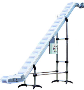 Stainless Belt Conveyor for Animal Feeds pictures & photos