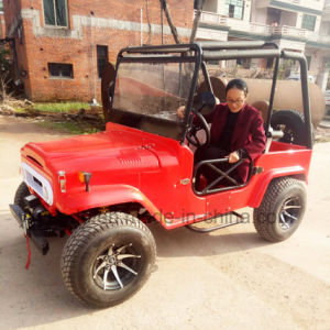 250cc Sports ATV for Adults pictures & photos