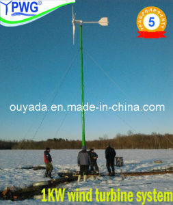 Pitch Controlled 1kw Wind Turbine (FD3.0-1000) pictures & photos