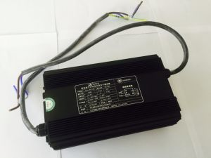 Lure-Fish Electronic Ballast 1000W pictures & photos
