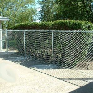 PVC Coated Chain Link Mesh Fence / Stainless Steel Chain Link Fence pictures & photos