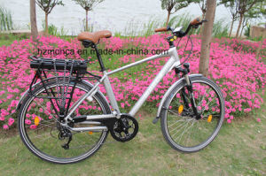 2017 M910 Sine Wave Super Low Noise Ce En15194 Certified Electric Bike City Ebicycle Warranty 2 Years pictures & photos