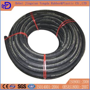 Flexible Hose SAE J2064 pictures & photos