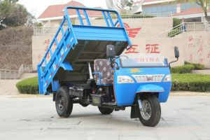 Right Hand Drive Dump Waw Diesel Tricycle From China for Sale pictures & photos