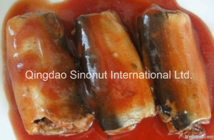 125g Canned Sardine in Tomato Sauce with Chilli pictures & photos
