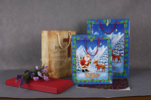 Factory Price Top Quality Christmas Gift Paper Bags pictures & photos