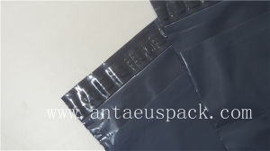 Self Seal Poly Express Bag