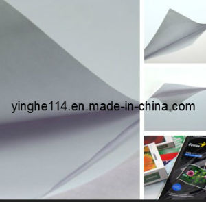 Good Price Waterproof High Glossy Photopaper pictures & photos