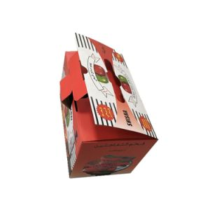 High Quality Corrugated Shipping and Packing Apple Box with Handle pictures & photos