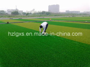 Artificial Grass Synthetic Turf for Footbal Filed -1 pictures & photos