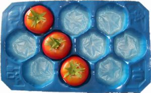 Factory Direct Sale Customized New Style 15lb/5lb Tomato Liner pictures & photos