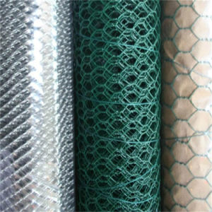 Hexagonal Stainless Steel Wire Mesh pictures & photos