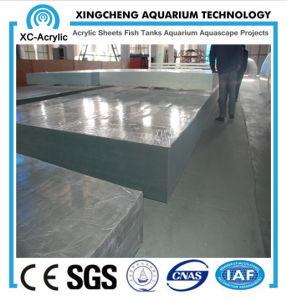Acrylic Customization/Large Aquarium Custom pictures & photos