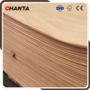 China Masawa Veneer with Good Quality pictures & photos
