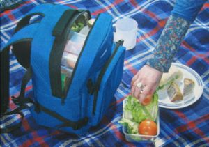 Picnic Cooler Backpack pictures & photos