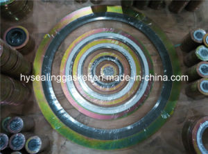 China Asme, Bs, JIS En (DIN) Spiral Wound Gaskets pictures & photos