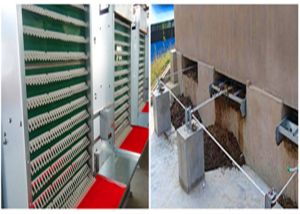 Poul Tech Automatic Chicken Poultry Cage Farm Equipment for Breeder Layer Chicken Cage (H type frame) pictures & photos