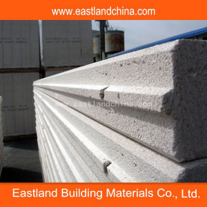 Autoclaved Aerated Concrete Panels pictures & photos