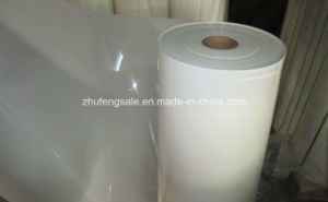 6021 Polyester Film Pet Film pictures & photos