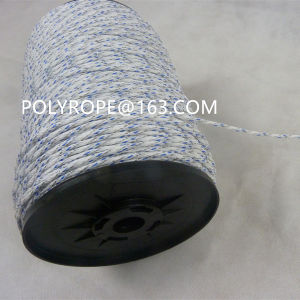 High Quality White and Blue Electric Braid pictures & photos