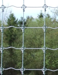 Deer Orchard Fence pictures & photos