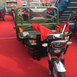 China Factory Best Safety and Popular 48V Electric Tricycle for Large Cargo pictures & photos