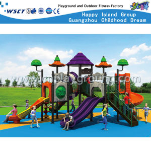 Amusement Park Slide Play Equipment Children Outdoor Playground HD-Tsg012 pictures & photos