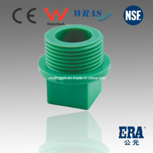 Plastic PPR DIN Standard Thread Plug pictures & photos