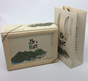 Different Style Wholesale Paper Gift Bags (FLP-8912) pictures & photos
