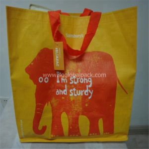 Colorful PP Woven Shopping Bag pictures & photos