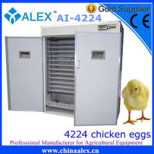 Stainless Steel Make Chicken Egg Incubator for Commercial Use