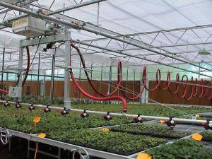 The Cheapest and Best Quality Greenhouse Drip Irrigation System pictures & photos