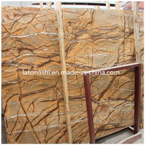 Indian Rain Forest Brown Marble Tile and Slab for Flooring pictures & photos