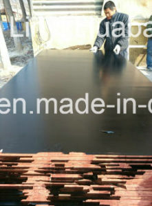 Birch Core Film Faced Plywood Phenolic Glue pictures & photos